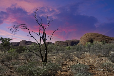 australian outback: Colors of Australian Outback during Winter Season, Northern Territory, Australia