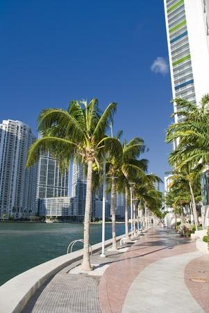 Miami Beach Coastline in Florida, U.S.A. photo