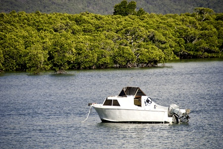 Coast near Port Douglas, Northern Queensland, Australia Stock Photo - 9607904