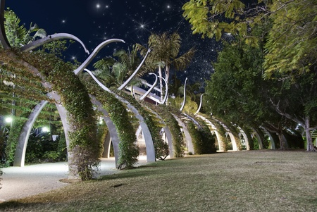 starry night: Starry Night over Brisbane Garden, Australia Stock Photo