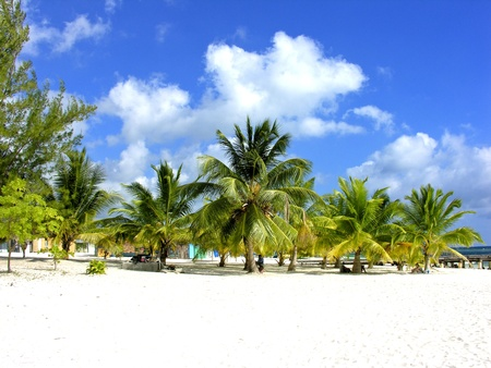 Caribbean Beach in Santo Domingo, Republica Dominicana photo