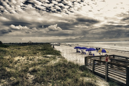 Colors of Honeymoon Island in Florida, U.S.A. Stock Photo - 12662823