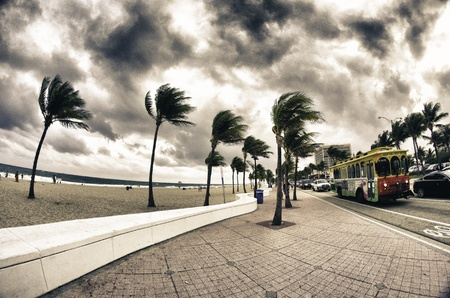 Streets of Fort Lauderdale, U S A  photo