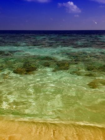 Colors of Maldives Sea photo