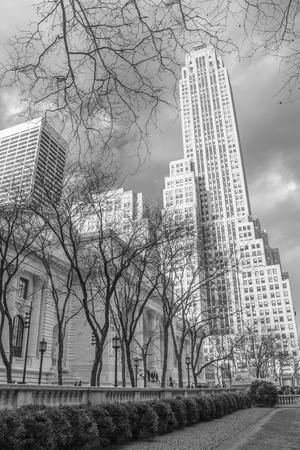 New York Public Library and Surrounding Skyscrapers, U S A  Stock Photo - 13047722
