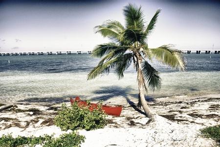 Detail of Keys Islands in Florida, U.S.A. photo