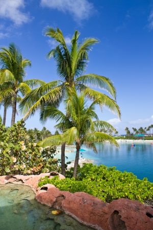 Colors of Nassau, the Bahamas photo