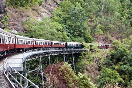 forest railway: View from the Kuranda-Cairns Train in Australia
