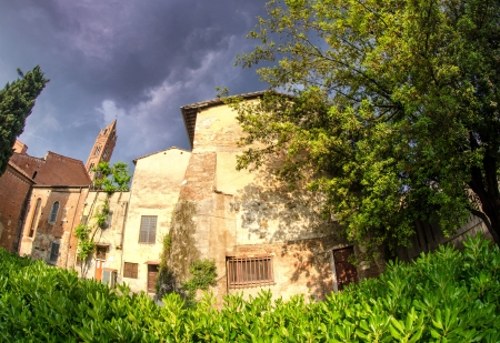 Typical Homes of Pisa and Vegetation, Italy photo