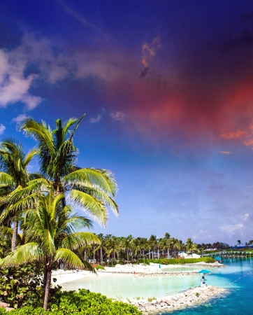 Cloudy Sky above Nassau Vegetation, Bahamas - Caribbean photo