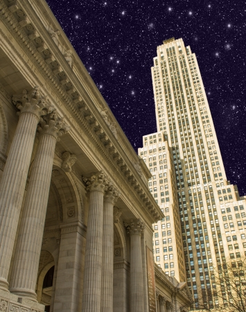 New york public library, largest city public library in the USA