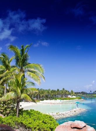 bahamas: Kleuren van Nassau, de Bahamas Stockfoto