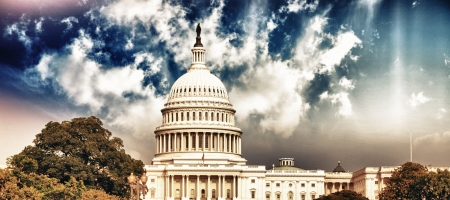 Washington Capitol with Sky and Vegetation, U S A  photo