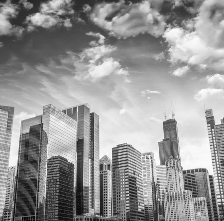 Skyscrapers and Skyline of Chicago, Illinois