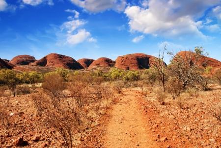 素晴らしい色とオーストラリアのアウトバックの風景。