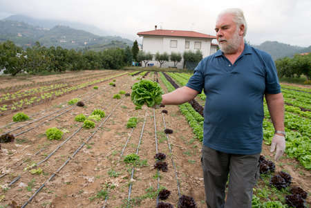 Proud farmer in front of his agriculture field - Italy photo