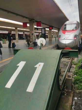 deregulation: FLORENCE - APR 5: Trenitalia Train stops in central station, April 5, 2013 in Florence. Trenitalia was created in the year 2000 following the EU directive on the deregulation of rail transport