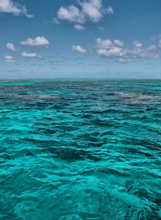 Crystal clear waters of Great Barrier Reef and coral cay in Queensland, Australia. photo