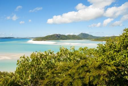 whitehaven: Wonderful sea and forest of Queensland. Whitehaven Beach - Australia.