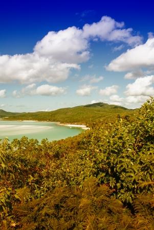 whitehaven: Whitehaven beach lagoon at national park queensland australia tropical coral sea world heritage. Stock Photo