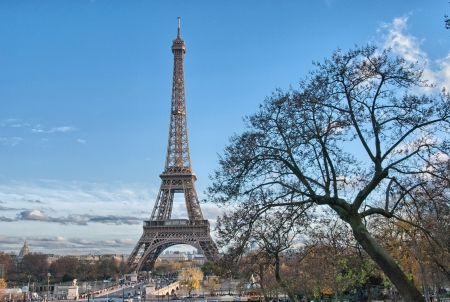 la tour eiffel: Paris. Beautiful view of Eiffel Tower in winter. La Tour Eiffel. Stock Photo