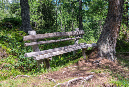Bench with a wonderful mountain view. Concept of relaxation. photo