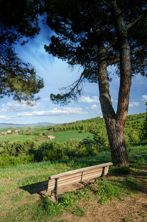 Landscape and Meadows of Tuscany in Spring, Italy photo
