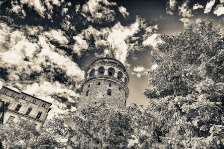 magnificence: Magnificence of Galata Tower framed by trees - Istanbul, Turkey.