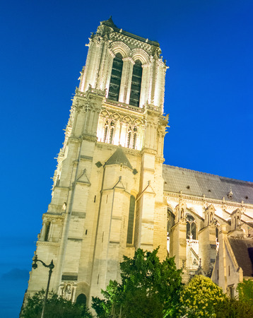 dame: Notre Dame at night, side view, Paris. Stock Photo