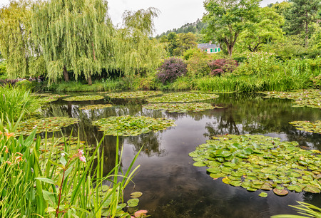 monet: Giverny. Monets Garden on a overcast day.
