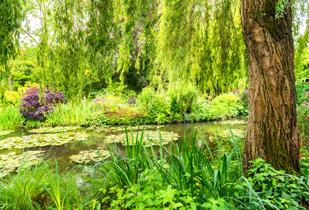 monet: France Giverny Monets garden on a spring day. Stock Photo