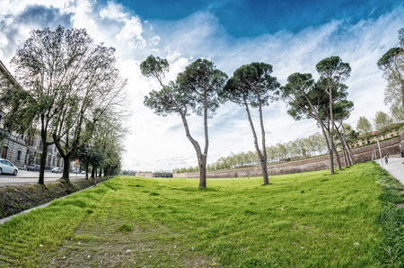 lucca: Park of Lucca. Stock Photo