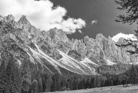 scenario: Wonderful scenario of italian alps.