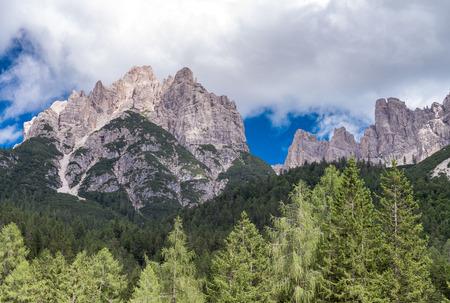 scenario: Stunning Alps summer scenario.