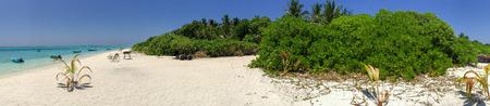 vegetation: Vegetation of Maldive Islands.