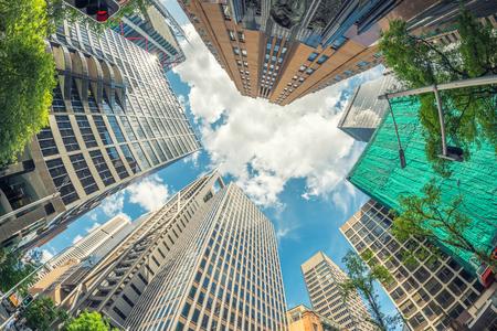 fisheye: Fisheye view of city skyscrapers.