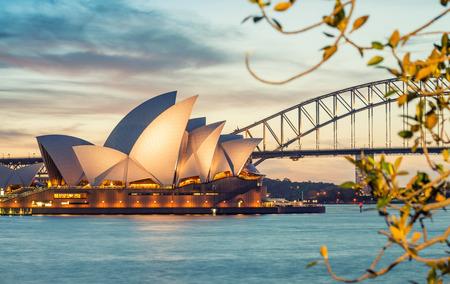 SYDNEY - 23. Oktober 2015: Schöne Aussicht auf den Hafen von Sydney. Sydney zieht 10 Millionen Besucher rund um den Globus jährlich.