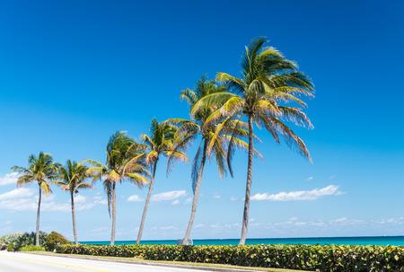 海岸のパームビーチ、フロリダ州。