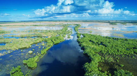 Aerial sunset view of Everglades swamp in Florida. 免版税图像