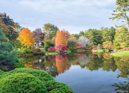 fall landscape: Foliage vegetation over a lake in autumn.