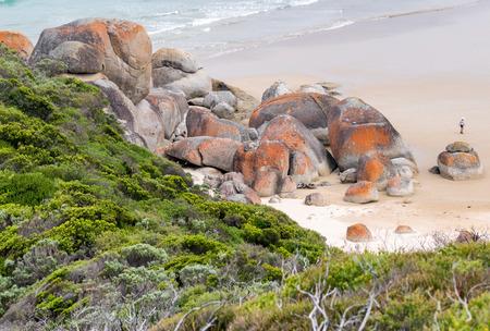 wilsons promontory: Wilsons Promontory Coast, Australia.