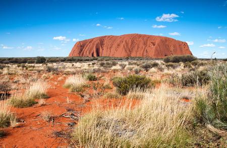 australian outback: Australian Outback vegetation, Northern Territory. Editorial