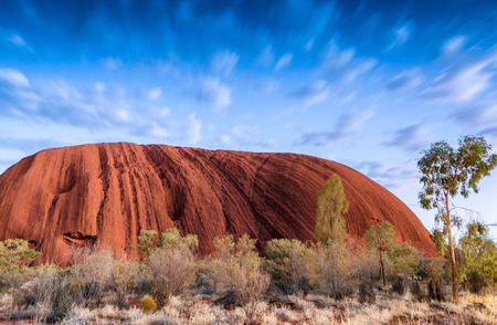 australian outback: Australian Outback vegetation, Northern Territory. Editorial