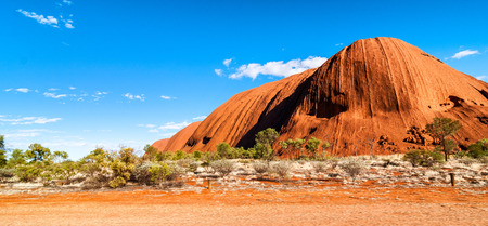 the outback: Australian Outback vegetation, Northern Territory. Stock Photo