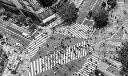 scramble: TOKYO, JAPAN - MAY 23, 2016: Pedestrians cross at Shibuya Crossing. It is one of the worlds most famous scramble crosswalks.