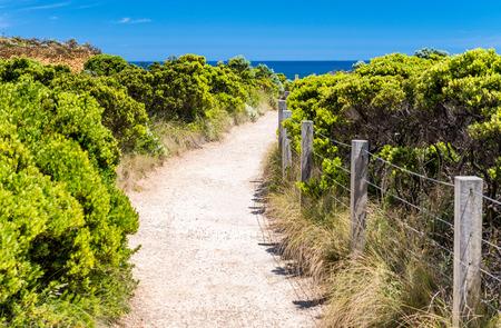Great Ocean Road Coastline in Victoria State, Australia.
