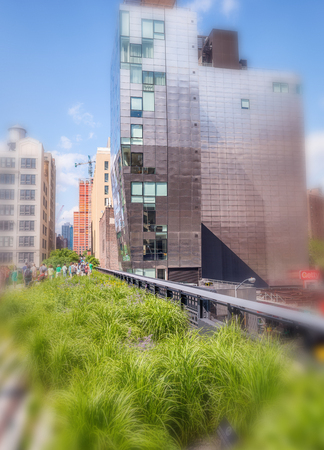 NEW YORK CITY - JUNE 2013: High Line and city buildings. New York attracts 50 million people every year.