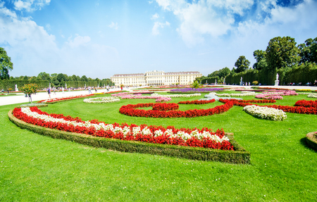 Vienna - Schoenbrunn Gardens flowers shapes, a UNESCO World Heritage Site - Austria