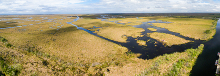 Panoramic aerial view of Everglades Swamps.