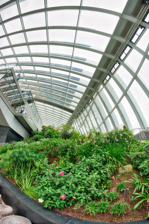 LONDON - SEPTEMBER 26, 2016: The Sky Garden, an indoor park and cafe on the top of the skyscraper at 20 Fenchurch Street, designed by Rafael Vinoly, located in London, UK.